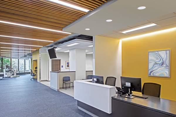 H.E. Williams, Inc. lighting office space